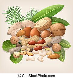 Nut collection with raw food mix Vector illustration