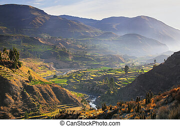 View of Colca Canyon with morning fog in Peru. It is one of...