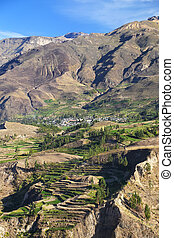 Stepped terraces in Colca Canyon in Peru It is one of the...