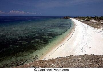 ASIA EAST TIMOR TIMOR LESTE DILI DOLLAR BEACH - the Dollar...