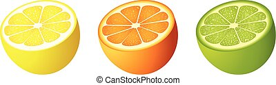 Citrus fruit cut - Scalable vectorial image representing a...