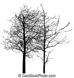 Shape of Tree without Leaves Vector Illustration