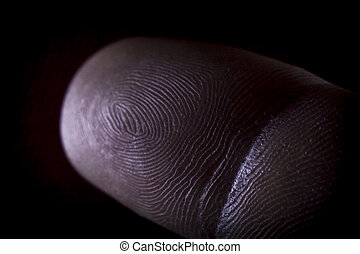 Fingerprint Pointer Finger - Human pointer finger macro...