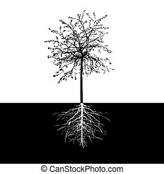 Black Shape of Tree without leaves and Roots Vector...