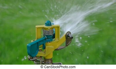 Garden irrigation by sprinkler system. Slow motion 120 FPS.