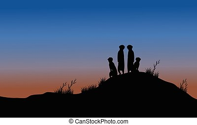Meerkat silhouette in the hills at night