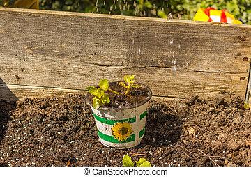 Frau bei Gartenarbeit. Frühling, Garten, Gartenarbeit,...