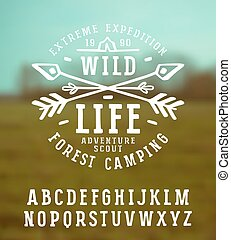 Slab serif font in the style of handmade graphics Font...