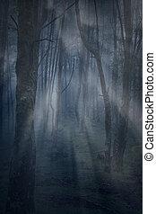 Magic foggy forest at dusk