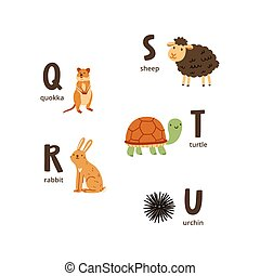Animal alphabet letters v to z - Animal alphabet letters q...