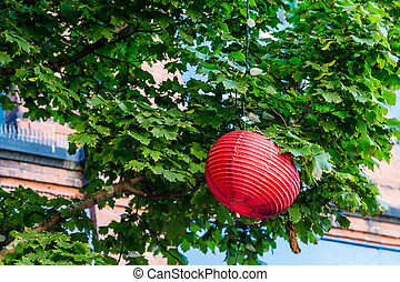 Red Japanese Lantern in Green Tree