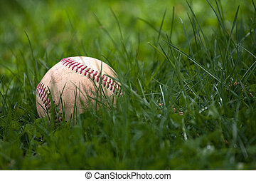 Baseball in the Grass - One aged and worn hardball or...