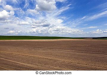 plowed field sky - farm field ready for planting crops...