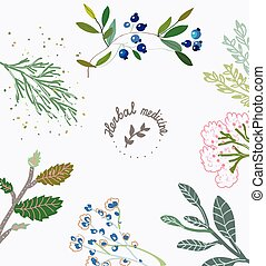 Herbal background for the organic medicine.
