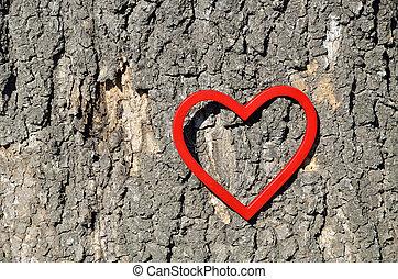 Heart Figure on Tree Trunk - Red heart figure on tree trunk...