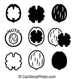 Walnut, nutshell vector icons set - Food icons set - walnuts...