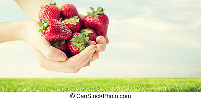 close up of woman hands holding strawberries - healthy...