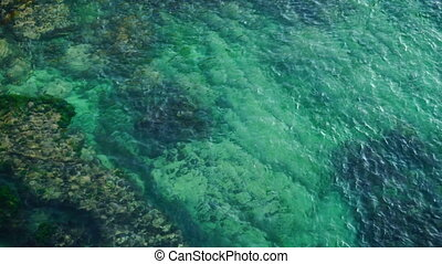 Water. Sealife. Nature - Turquoise warm sea with coral reefs...