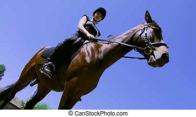 Horseback riding - Beautiful girl rides in a circle on the...