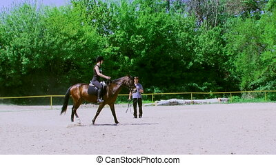 Training horse - Beautiful girl jockey rides in a circle on...