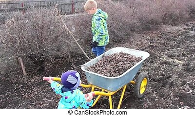 children remove the dry leaves