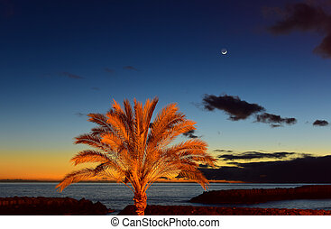 Sunset on beach with moonrise in Madeira insel, Portugal