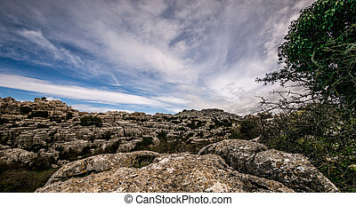 El Torcal de Antequera - Rock and vegetation on the rocks of...