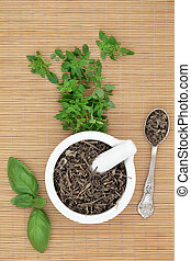 Basil Herb Types - Fresh basil herb varieties with dried...