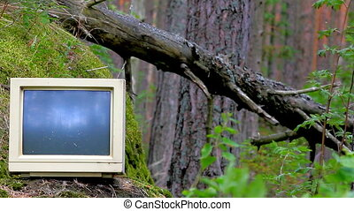 Ubiquitous computer. Old monitor storm threw into pine woods...