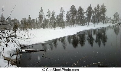 First snow 1 Dense big snow falls over forest and river -...