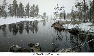 First snow 2. Dense big snow falls over forest and river -...