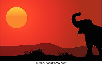 Silhouette of elephant at sunset with sun