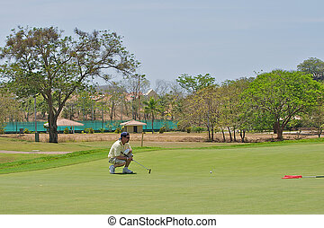 Golfer lining up a shot - Golfer lining up a shot on the...