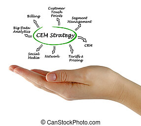 Diagram of CEM Strategy