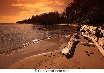 ASIA BRUNEI DARUSSALAM - a Beach on the coast near the city...
