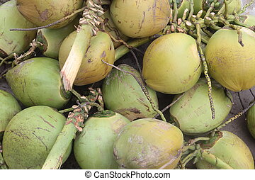 ASIA BRUNEI DARUSSALAM - cocosnut at the market in the city...