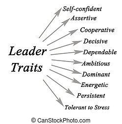 Diagram of leader traits