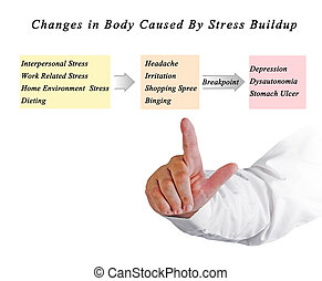 Changes in Body Caused By Stress Buildup