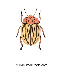 Cockchafer vector silhouette. Chafer on white background.