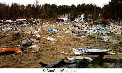 Killed forest. Rubbish dump in woods. North Russia