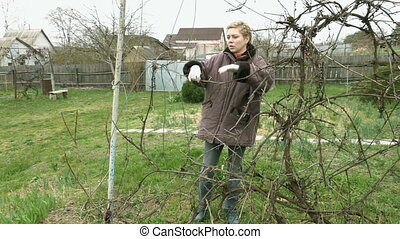 Country girl gardener prunes vine grape twigs