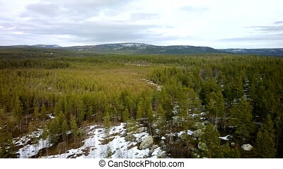 Welcome to Christmas 2 Birds eye panorama of Lapland taiga -...