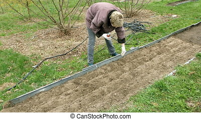 Country girl plants and seeds bed vegetable garden - Country...
