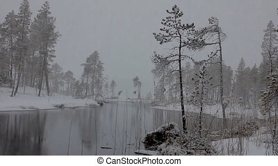 First snow Dense big snow falls over forest and river -...
