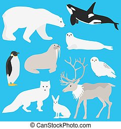 Arctic animals collection three - Arctic animals...