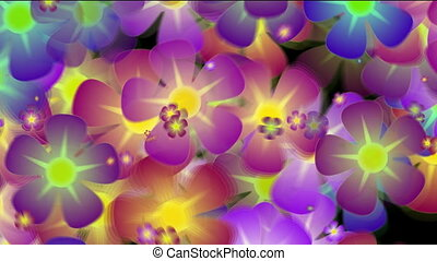 Colorful flowers seamless loop