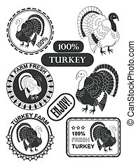 Set of premium turkey meat labels and stamps. Vector
