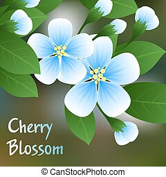 Flowering cherry. Blue flowers on a branch with green leaves and place for text. Vector