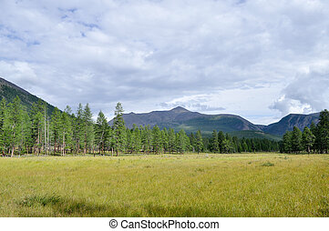 Grassy valley along the mountain ridge - Yakutia, Russia,...