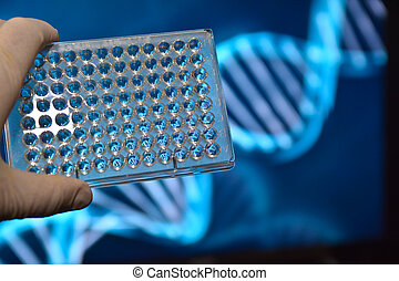 The DNA testing Photo well plates at a scientific background...